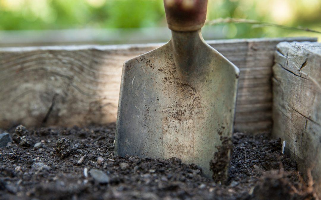 Eszköz vagy érték a munkavállaló?  – a vezető szerepe a fluktuációban